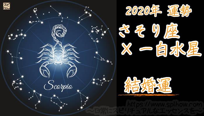 【結婚運】さそり座×一白水星【2020年】のアイキャッチ画像