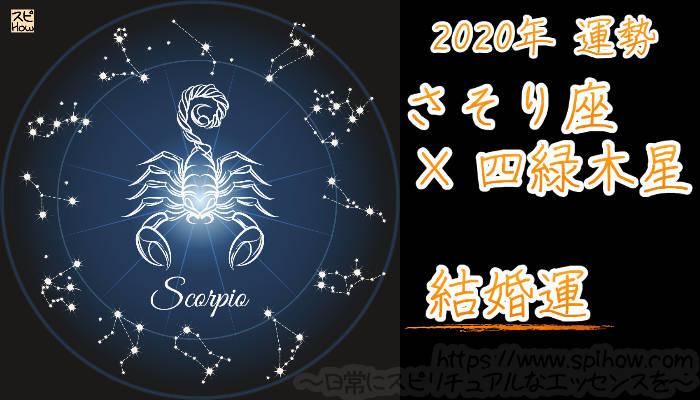【結婚運】さそり座×四緑木星【2020年】のアイキャッチ画像