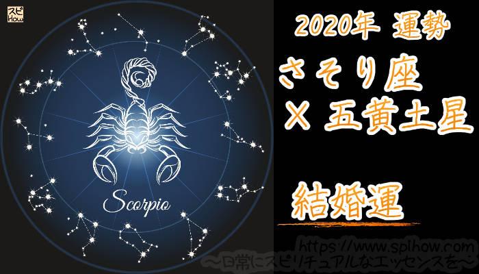 【結婚運】さそり座×五黄土星【2020年】のアイキャッチ画像