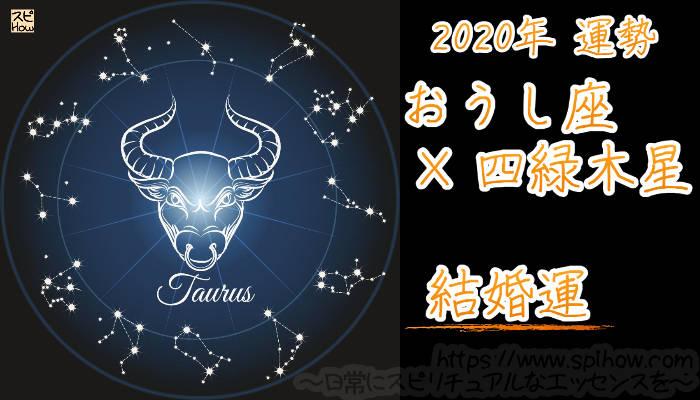【結婚運】おうし座×四緑木星【2020年】のアイキャッチ画像