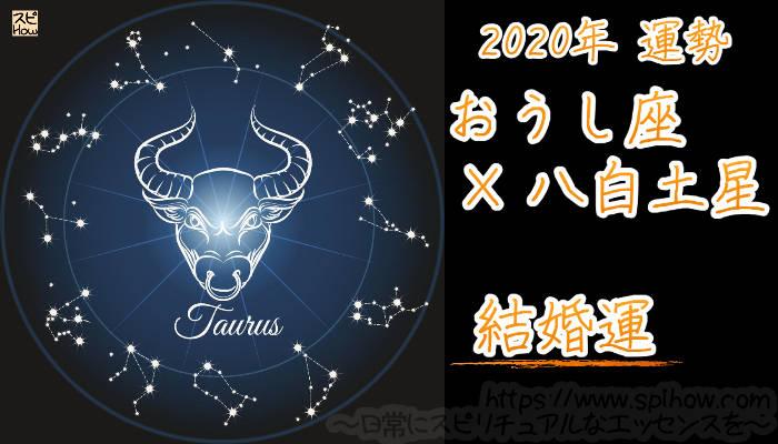 【結婚運】おうし座×八白土星【2020年】のアイキャッチ画像
