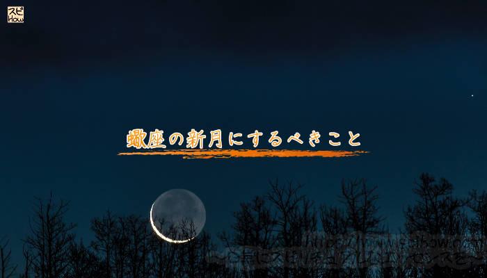 蠍座の新月にするべきことのアイキャッチ画像