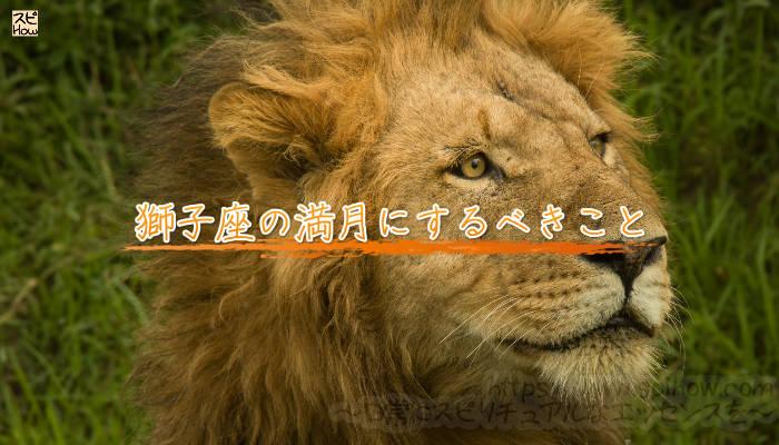 獅子座の満月にするべきことのアイキャッチ画像