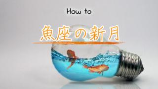 春分前の2月の魚座の新月!するべきことと開運方法ご紹介のアイキャッチ画像