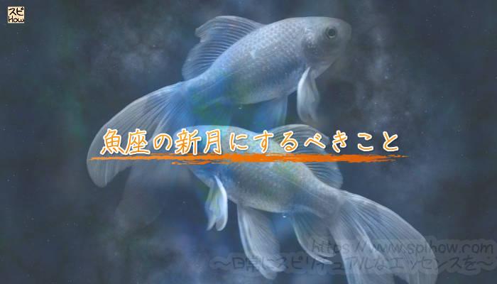 魚座の新月にするべきことのアイキャッチ画像