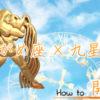水瓶座(みずがめ座)   スピリチュアル How to … スピハウ